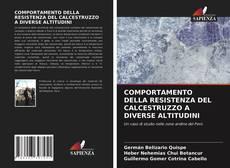 COMPORTAMENTO DELLA RESISTENZA DEL CALCESTRUZZO A DIVERSE ALTITUDINI kitap kapağı