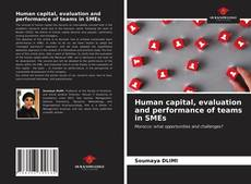 Capa do livro de Human capital, evaluation and performance of teams in SMEs