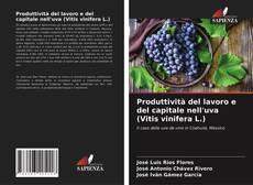 Bookcover of Produttività del lavoro e del capitale nell'uva (Vitis vinifera L.)