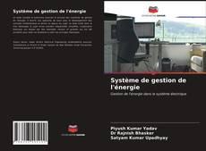Buchcover von Système de gestion de l'énergie