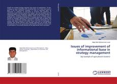 Copertina di Issues of improvement of informational base in strategy management