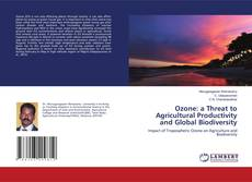 Couverture de Ozone: a Threat to Agricultural Productivity and Global Biodiversity