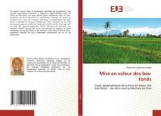 Bookcover of Mise en valeur des bas-fonds