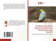 Bookcover of Protection des droits humains et Résilience économique post Covid19