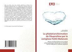 Borítókép a  La phototransformation de l'ibuprofène par le complexe Fe(III)-Malonate - hoz