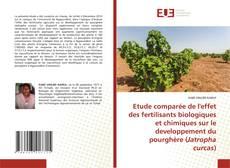 Bookcover of Etude comparée de l'effet des fertilisants biologiques et chimiques sur le developpement du pourghère (Jatropha curcas)