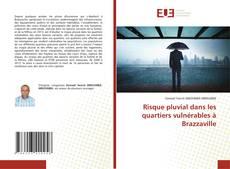 Bookcover of Risque pluvial dans les quartiers vulnérables à Brazzaville
