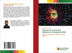 Capa do livro de Tópicos de Teoria dos Números e Criptografia RSA