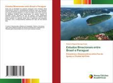 Estudos Binacionais entre Brasil e Paraguai kitap kapağı
