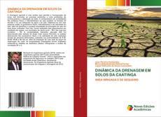 DINÂMICA DA DRENAGEM EM SOLOS DA CAATINGA kitap kapağı