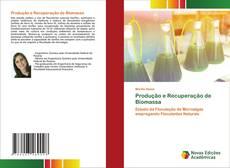 Обложка Produção e Recuperação de Biomassa