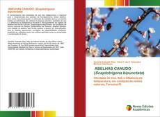 ABELHAS CANUDO (Scaptotrigona bipunctata)的封面
