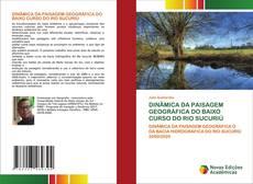 Bookcover of DINÂMICA DA PAISAGEM GEOGRÁFICA DO BAIXO CURSO DO RIO SUCURIÚ