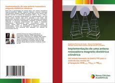 Bookcover of Implementação de uma antena ressoadora magneto-dielétrica cilíndrica