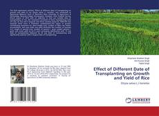 Bookcover of Effect of Different Date of Transplanting on Growth and Yield of Rice