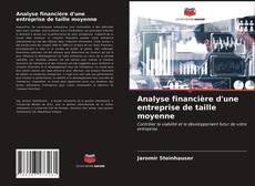 Buchcover von Analyse financière d'une entreprise de taille moyenne