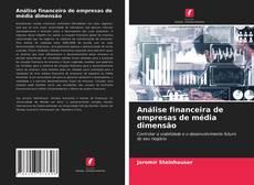 Bookcover of Análise financeira de empresas de média dimensão