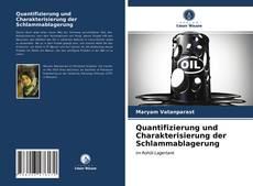 Portada del libro de Quantifizierung und Charakterisierung der Schlammablagerung