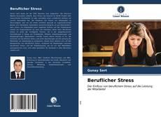 Copertina di Beruflicher Stress