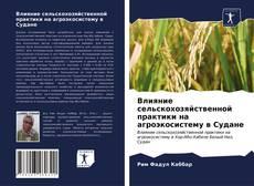Влияние сельскохозяйственной практики на агроэкосистему в Судане kitap kapağı