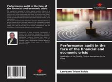Bookcover of Performance audit in the face of the financial and economic crisis