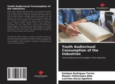Bookcover of Youth Audiovisual Consumption of the Industries