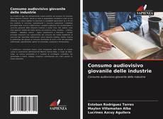 Bookcover of Consumo audiovisivo giovanile delle industrie