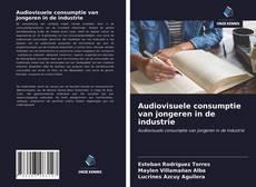 Copertina di Audiovisuele consumptie van jongeren in de industrie