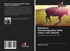 Buchcover von Biometria ultrasonografica delle ovaie e dei follicoli