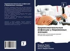 Portada del libro de Цервиковагинальные инфекции у беременных женщин