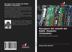 Copertina di Recupero dei metalli dai RAEE. Medellín (Colombia)