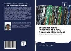 Bookcover of Восстановление металлов из УЭЭО. Медельин (Колумбия)