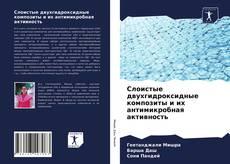 Buchcover von Слоистые двухгидроксидные композиты и их антимикробная активность
