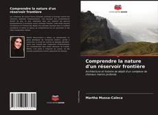 Bookcover of Comprendre la nature d'un réservoir frontière
