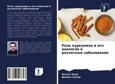 Buchcover von Роль куркумина и его аналогов в различные заболевания