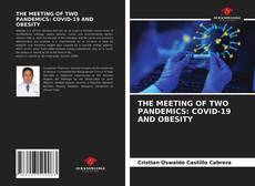 Borítókép a  THE MEETING OF TWO PANDEMICS: COVID-19 AND OBESITY - hoz