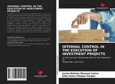 Capa do livro de INTERNAL CONTROL IN THE EXECUTION OF INVESTMENT PROJECTS