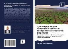 Copertina di ЦАР перед лицом изменения климата: восприятие и стратегии фермеров