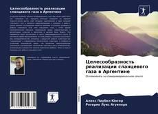 Buchcover von Целесообразность реализации сланцевого газа в Аргентине