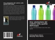 Copertina di Una valutazione del cadmio sulla qualità dell'acqua