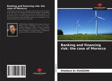 Bookcover of Banking and financing risk: the case of Morocco