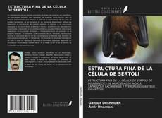 Couverture de ESTRUCTURA FINA DE LA CÉLULA DE SERTOLI