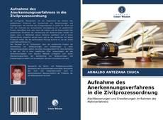 Copertina di Aufnahme des Anerkennungsverfahrens in die Zivilprozessordnung