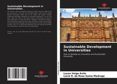 Sustainable Development in Universities的封面