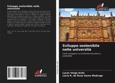Sviluppo sostenibile nelle università的封面