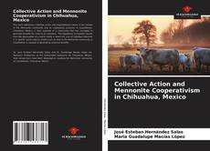 Couverture de Collective Action and Mennonite Cooperativism in Chihuahua, Mexico