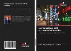 Copertina di Introduzione agli strumenti di credito