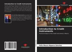 Buchcover von Introduction to Credit Instruments
