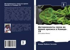 Portada del libro de Детерминанты связи во время кризиса в Ковиде-19