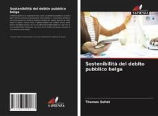 Sostenibilità del debito pubblico belga kitap kapağı
